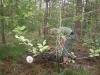 Kamp Hamont-Achel 2011_deel9_45.jpg