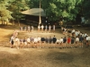 Kamp Hechtel 1996_17.jpeg